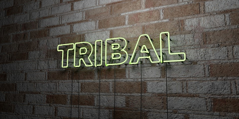 TRIBAL - Glowing Neon Sign on stonework wall - 3D rendered royalty free stock illustration.  Can be used for online banner ads and direct mailers..