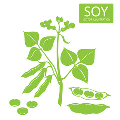 Soybeans Silhouette. Vector Illustrations Set On A White Background. Soybeans For Sale. Soybeans Estrogen. Soybeans Plant. Complete Protein.