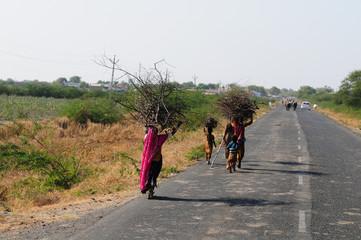 Tribal woman carrying firewood home, Gujarat, India, Asia