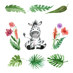Cute baby Zebra Animal for kindergarten, nursery, children clothing, pattern