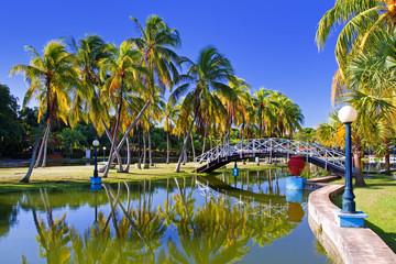 Printed roller blinds Caribbean park josone in varadero, cuba