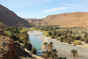 River Oasis in Morocco
