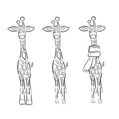 Hand drawn Illustration of Giraffe  isolated on white background