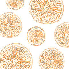 Sketch of sliced citrus fruit on white background square composition