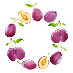 Watercolor vector wreath with plums