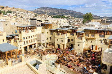The tanneries of Fes, Morocco, Africa
