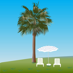 Palm tree and chaise lounges