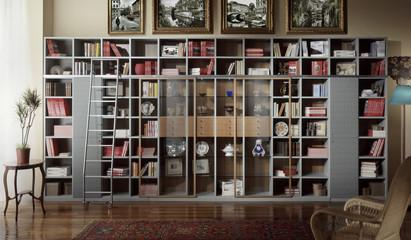 Ambiente con libreria