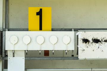 Biathlon. Target sports to rifle shooting .