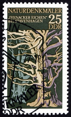 Postage stamp Germany 1976 Ivenacker Oaks, Reuterstadt