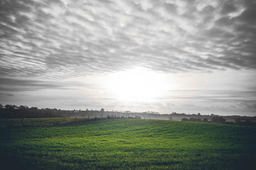 Countryside sunrise with green fields