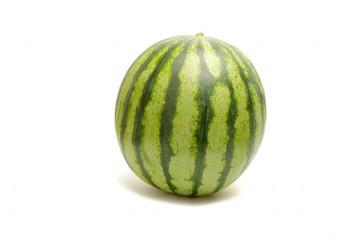 One big green striped watermelon