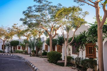 tropical street location in red sea arab style sun.