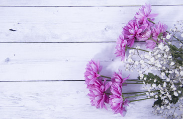 Colorful purple and white flowers with an area for text