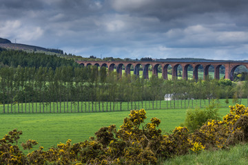 Inverness, Scotland - June 2, 2012: The long Culloden train viaduct is collection of red-stone bows and runs over the green valley under cloudy sky. Scotch broom hedge up front.