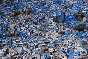 The Blue City of Jodhpur seen from the Mehrangarh Fort, Jodhpur, Rajasthan, India, Asia