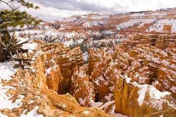 Fresh Snow Blankets Bryce Canyon Rock Formations Utah USA