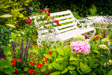 Beautiful, romantic, home garden with variety of blooming flowers, summertime