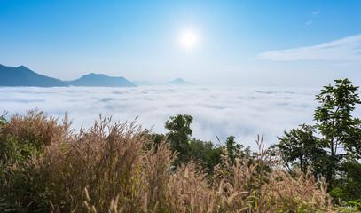 sea of fog over Phu Thok Mountain