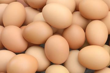 egg,on,eggs