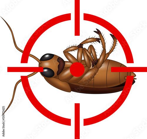 cockroach on target icon im genes de archivo y vectores libres de derechos en. Black Bedroom Furniture Sets. Home Design Ideas