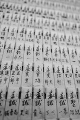Japanese calligraphy (shodo) in black and white, with shallow depth of field causing a blur