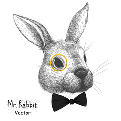 Vector portrait of a rabbit