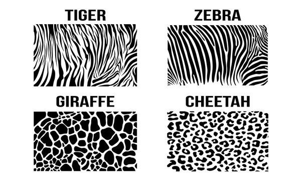 Black White Cheetah Giraffe Zebra Tiger Vector Skin Pattern