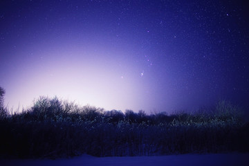winter night photo