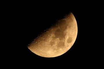 半月:月齢6.7