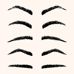 Types of brow vector illustration. Template hand drawing eyebrow