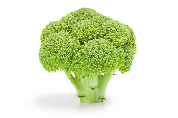 Broccoli floret isolated on a white background cutout