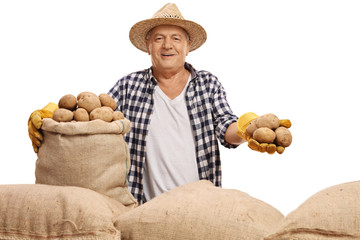 Mature farmer with a burlap sack and potatoes