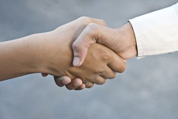 Shaking of Corporate hands.
