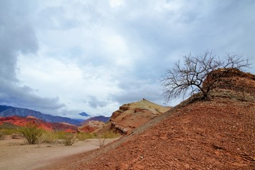 Impressions of the Canyon Quebrada de las Conchas with walls of rock displaying a multitude of red hues close to Cafayate in Chile, South America