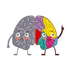 human brain with two cerebral hemispheres icon over white background. colorful design. vector illustraiton