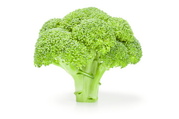 Fresh green broccoli isolated on a white background cutout