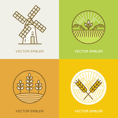 Vector set of illustrations and logo design