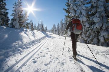 Na biegówkach przez Żmijowiec w Masywie Śnieżnika, Kotlina Kłodzka Wall mural