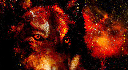 magical space wolf, multicolor computer graphic collage. Space fire.