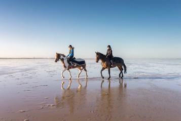 Printed roller blinds Horseback riding cavalière au trot