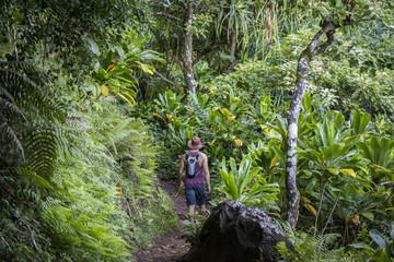 Hiking Kalaulau Trail on Kauai