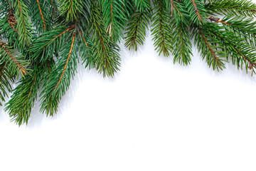 Christmas tree branches border on white background