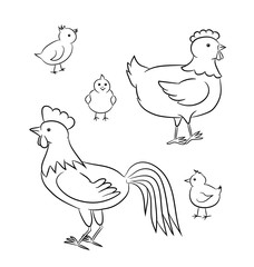 Outlined vector illustration of a funny chicken family.