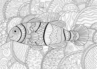 Clownfish with high details.