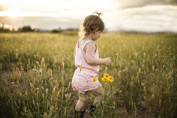 Little girl walking in a grassy field