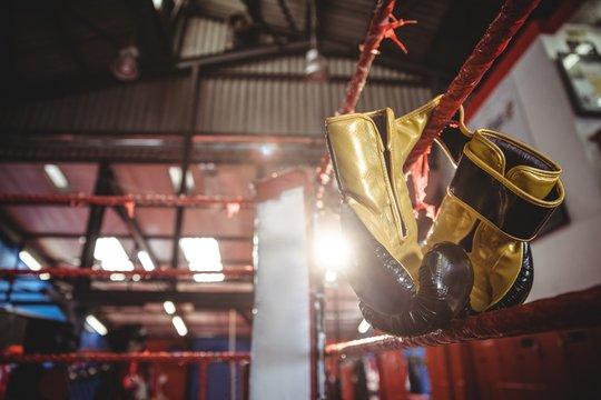 Yellow boxing gloves hanging off the boxing ring