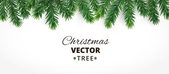 Horizontal banner with vector christmas tree branches and space