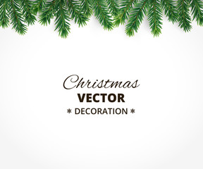 Background with vector christmas tree branches and space for tex