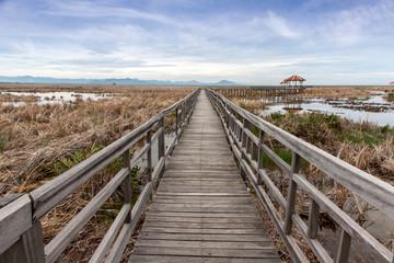 wooden bridge stretches across the dry grasslands